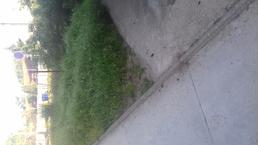 Kosenie buriny pred bytovym domom č103