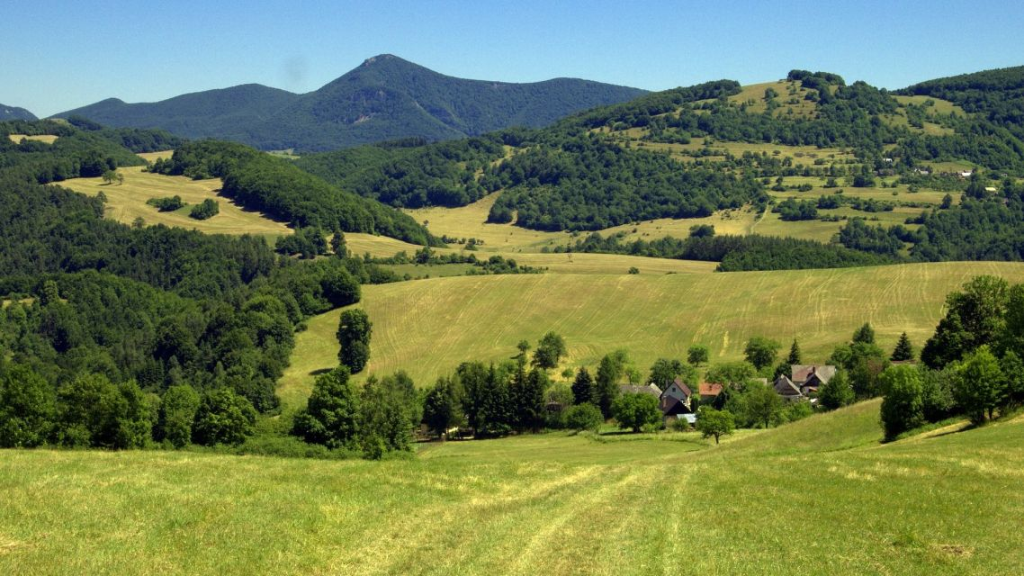 Ochrana prírody - výrub drevín